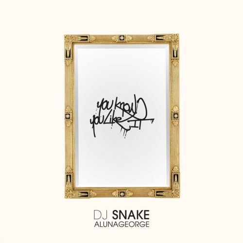 You Know You Like It Dj Snake Album Cover
