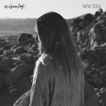 Testi New Soul