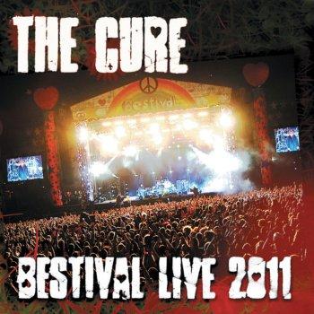 Testi Bestival Live 2011