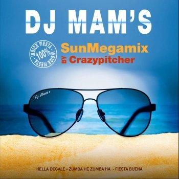 SunMegamix 2015 by Crazy Pitcher by DJ Mam's album lyrics