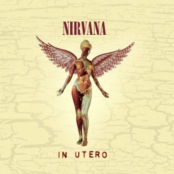 Testi In Utero - 20th Anniversary (Remastered)