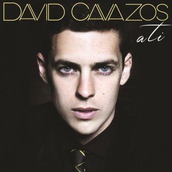 David cavazos cama y mesa lyrics musixmatch for Cama y mesa roberto carlos letra