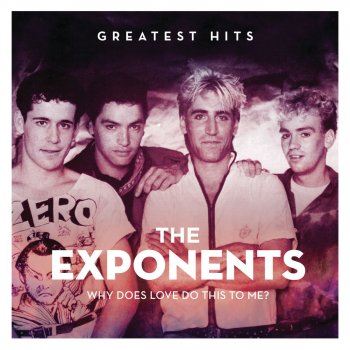 Testi Why Does Love Do This To Me: The Exponents Greatest Hits