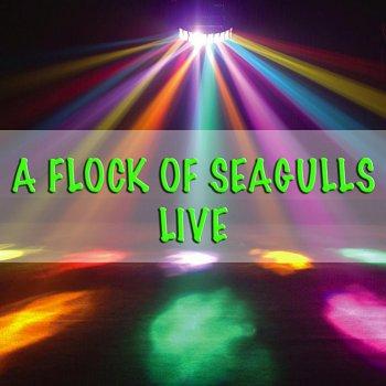 Testi A Flock of Seagulls - Live