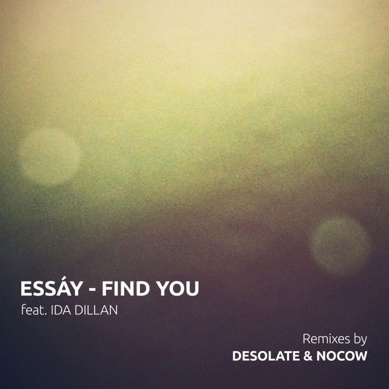 essay ida dillan find you