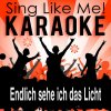 Endlich sehe ich das Licht (Karaoke Version) [Originally Performed By Pia Allgaier & Manuel Straube]