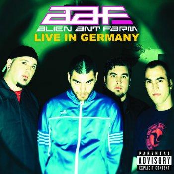 Testi Live In Germany