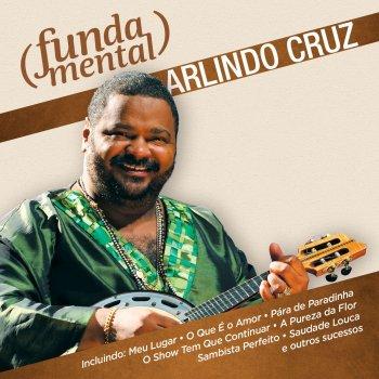 Testi Fundamental - Arlindo Cruz