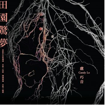 田園驚夢                                                     by 盧巧音 – cover art