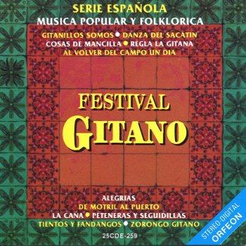 Testi Serie Española: Festival Gitano
