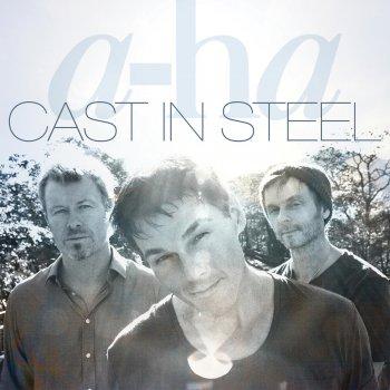 Testi Cast In Steel