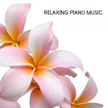 Testi Relaxing Piano Music for Quiet Moments