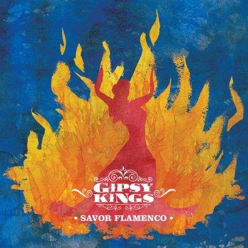 Testi Savor Flamenco