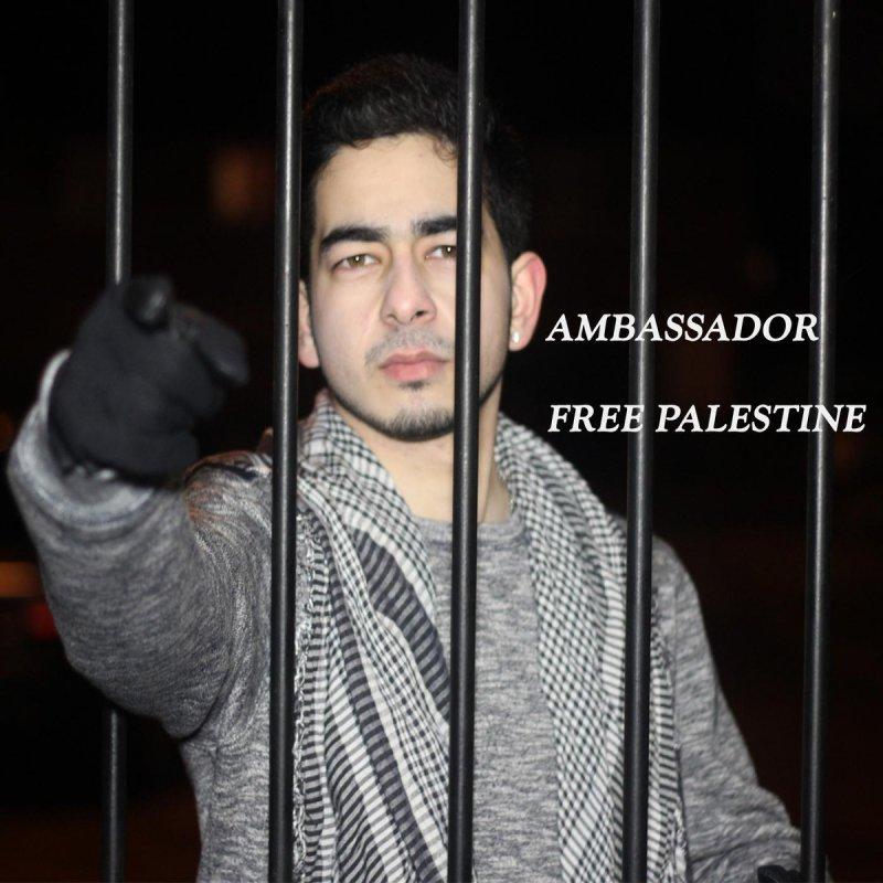 ambassador übersetzung
