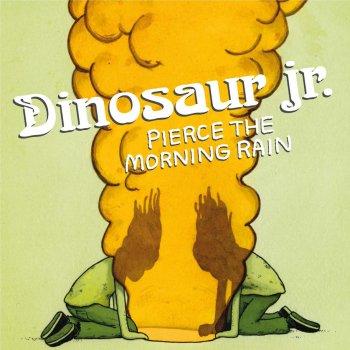 Testi Pierce the Morning Rain