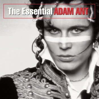 Testi The Essential Adam Ant