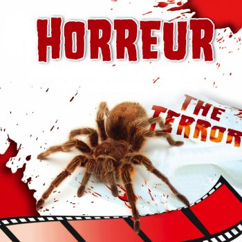Testi Les Meilleures Musiques de Films : Horreur