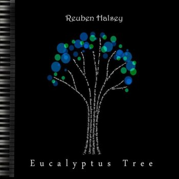 Eucalyptus Tree Finding Zen - lyrics