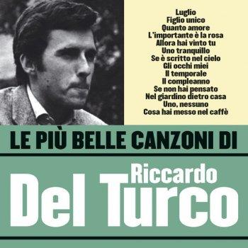 Testi Le Più Belle Canzoni Di Riccardo del Turco