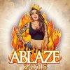 Traduzione Ablaze 2015