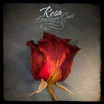Testi Rosa