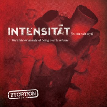 Testi Intensitat (In-Ten-Suh-Teyt ) The State or Quality of Being Overly Intense