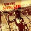 Karardı Karadeniz lyrics – album cover