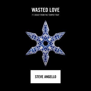 Testi Wasted Love