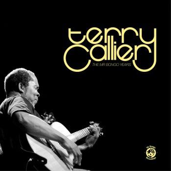 Testi Terry Callier: The Mr. Bongo Years