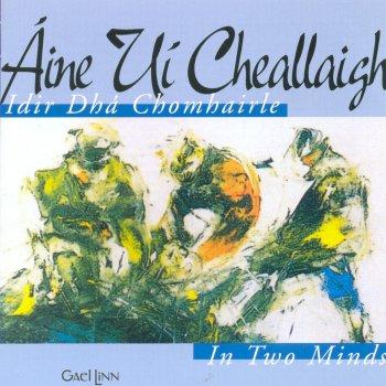 Testi Idir Dhá Chomhairle (In Two Minds)