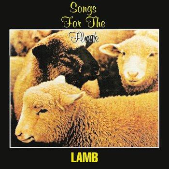 Testi Songs for the Flock