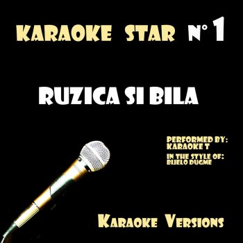 Testi Ruzica Si Bila (In the Style of Bijelo Dugme) [Karaoke Versions]