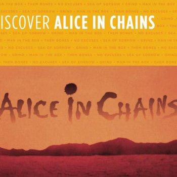 Testi Discover Alice In Chains
