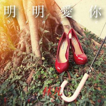 明明愛你                                                     by 林凡 – cover art