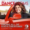 """Among All of God's Creatures (From """"Dance Moms"""") lyrics – album cover"""