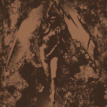 Testi Converge / Napalm Death Split