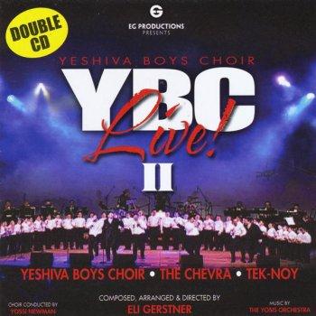 Testi YBC Live! II
