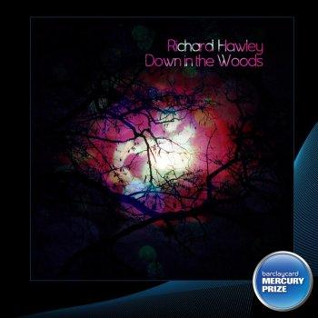 Testi Down in the Woods (2012 Barclaycard Mercury Prize Awards)