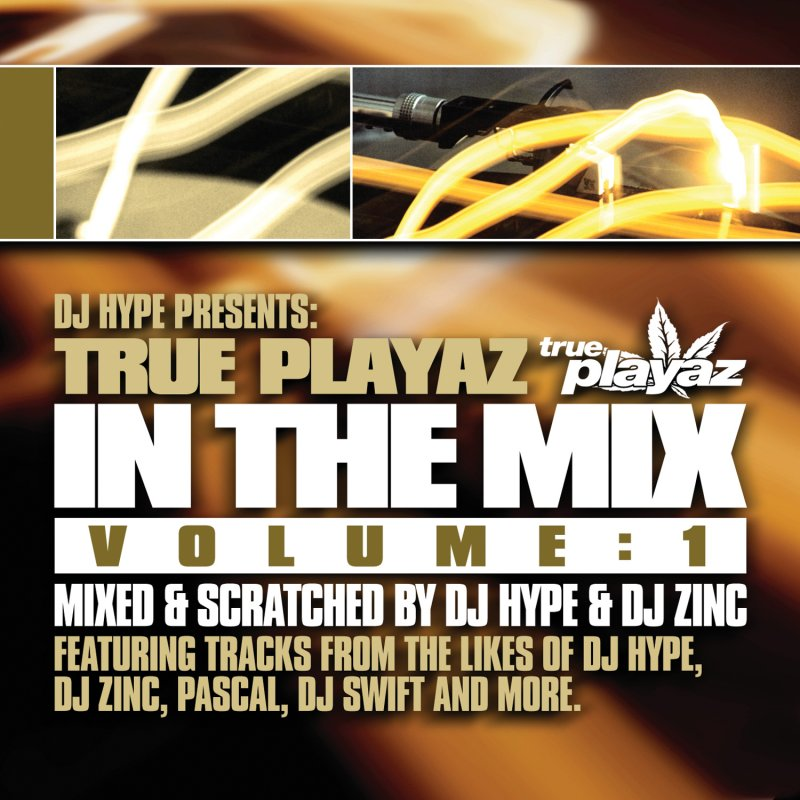 DJ Zinc - No Diggity Lyrics | Musixmatch
