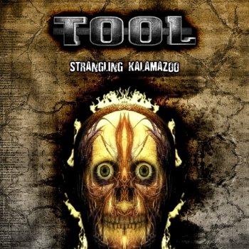 1998-07-15: Wings Stadium, Kalamazoo, MI, USA by Tool album