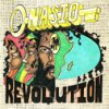 Revolution Nasio Fontaine - cover art