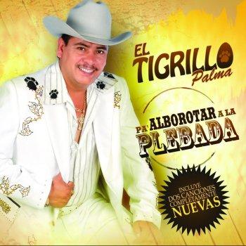EL TIGRILLO PALMA 15 años de prision Lyrics - JustSomeLyrics