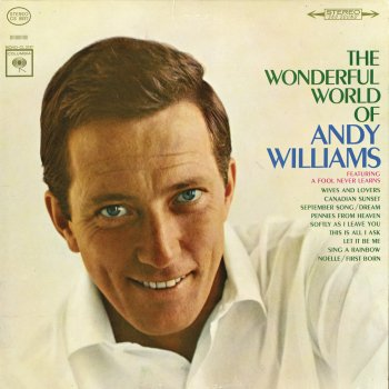 Testi The Wonderful World of Andy Williams