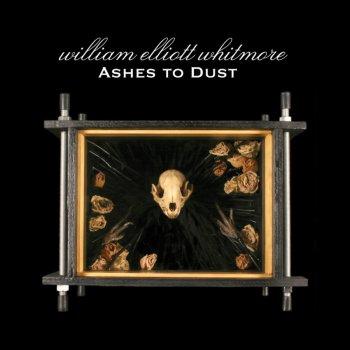 Testi Ashes to Dust