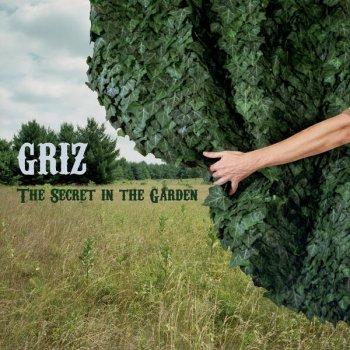 The Secret In the Garden by GRiZ album lyrics | Musixmatch - Song ...
