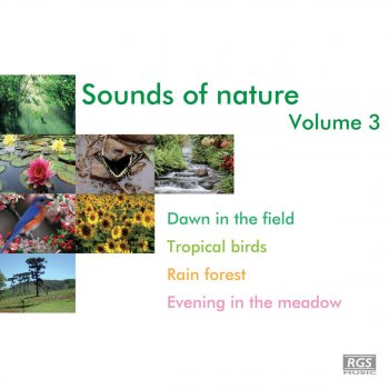 Testi Sounds Of Nature Volume 3