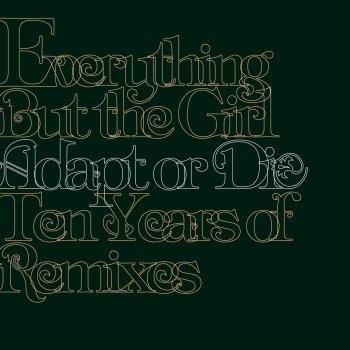 Testi Adapt or Die - 10 Years of Remixes