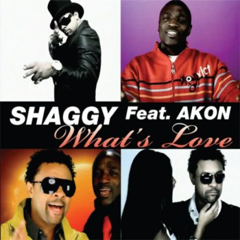 What's Love (feat  Akon) - Bigroom Mix (Testo) - Shaggy