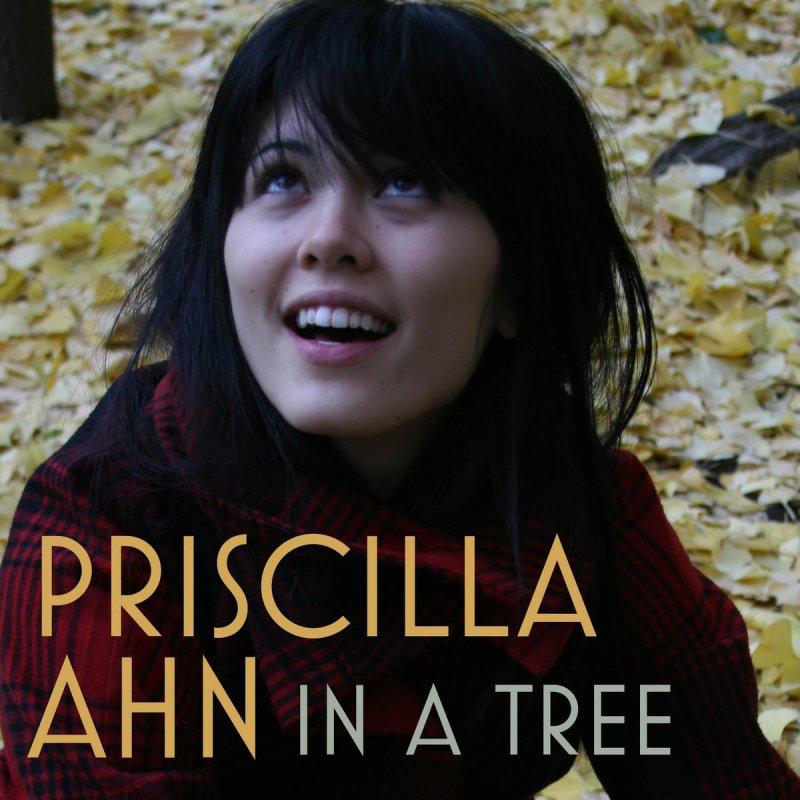 Mercy Me Rockin Around The Christmas Tree: Priscilla Ahn - In A Tree Lyrics