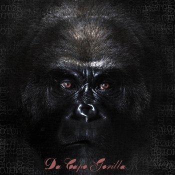 Testi Da Capo Gorilla